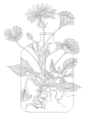 naturelab_black-on-transperant